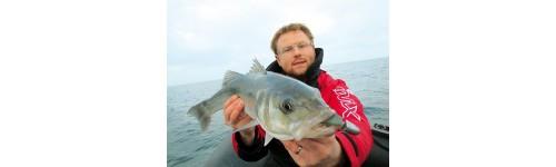 Pêche en mer et carnassier